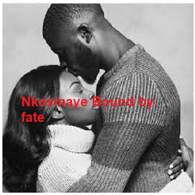 Nkosinaye Bound by fate Download